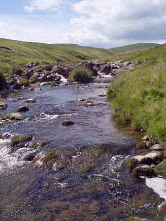 The Coquet